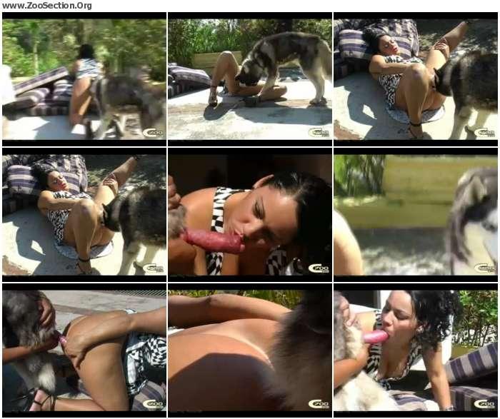3efdf01012396594 - My Dog Like Underdress / AnimalSex Video