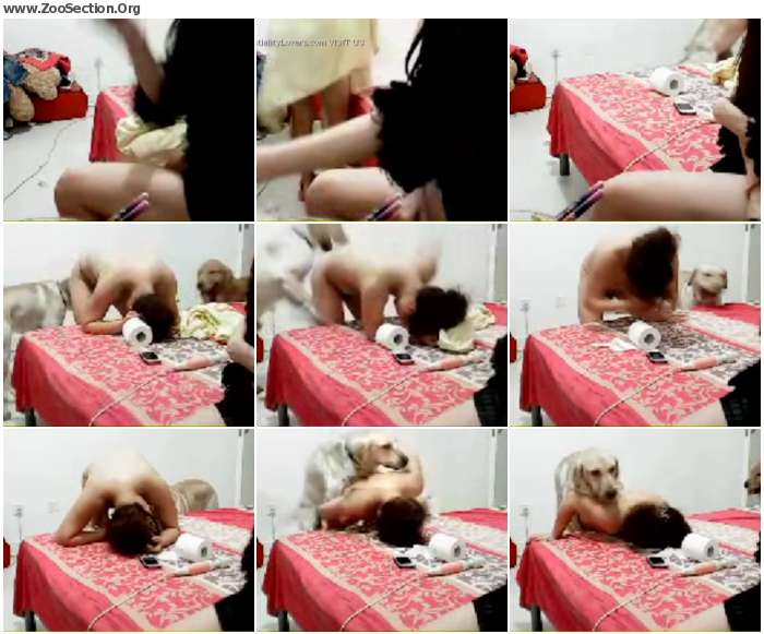 1673421012945214 - Zoo Xvideos Chinese Webcam Amateur Dog Hot Porn Girls / Stickam ZooSex