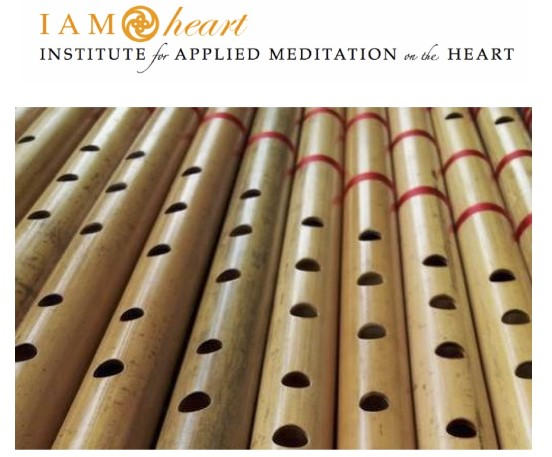 101: Introduction to Heart Rhythm Meditation