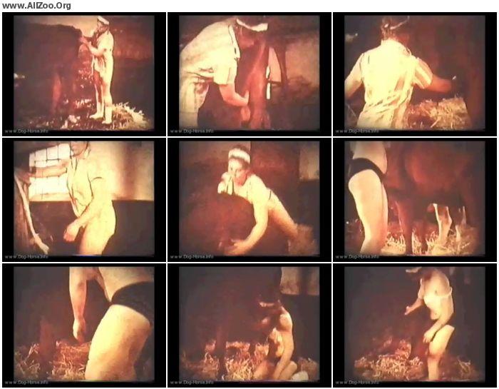 0f90b7673225303 - Vintage Zoo - Bodil Joensen - Horse Lovers - Retro AnimalSex