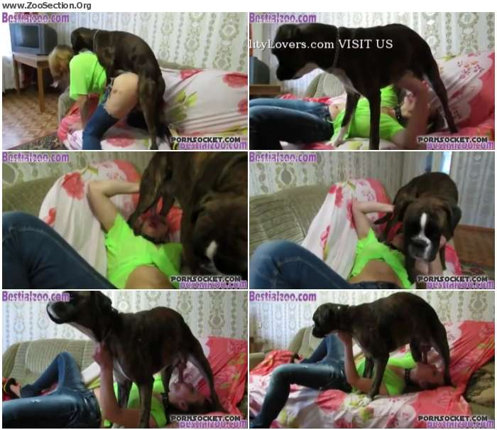3e727a1012954824 - Team Russian Teen Amateur Dog Blonde Blowjob Fuck Dog / Stickam ZooSex