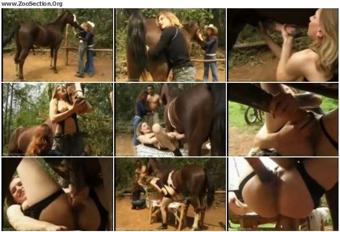52aa8a1012373684 - Bfi - Adilia - Deepthoats Stallion Horse Cock / AnimalSex Video