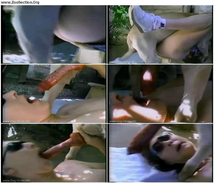 111d4a1250296434 - Frisky Shades - Vintage Bestiality Porn