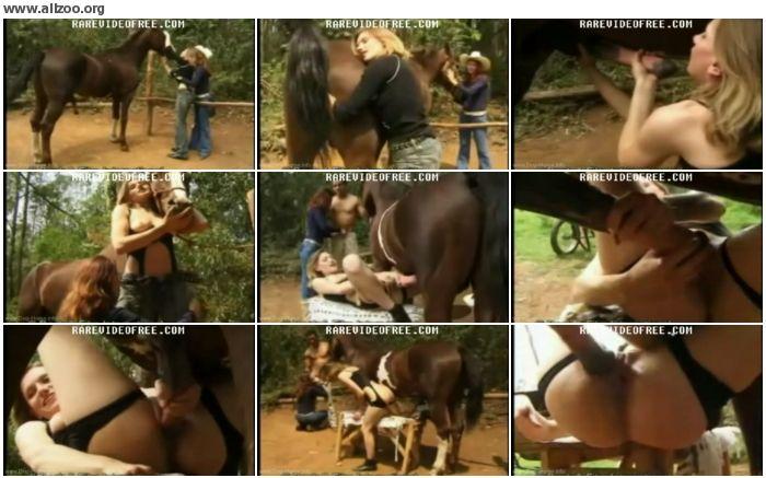 549fd7672680063 - Adilia The Dutch Slut Deepthoats Horse Cock - Videos Bestiality Horse