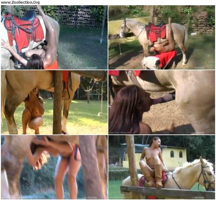 61058e1250320864 - Animal Horse Abuses Arse - Horse Porn Video