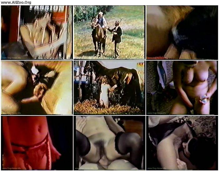 a928f3673201823 - Vintage Zoo - Bodil Joensen Retro Animal Fuck - Retro AnimalSex