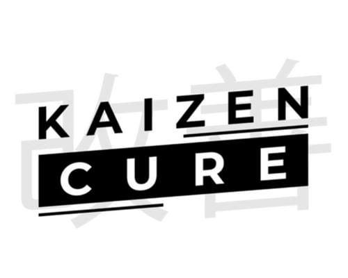 Iman Gadzhi - Kaizen Cure