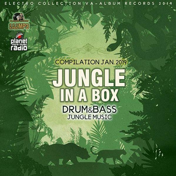 Jungle In A Box (2019) Mp3