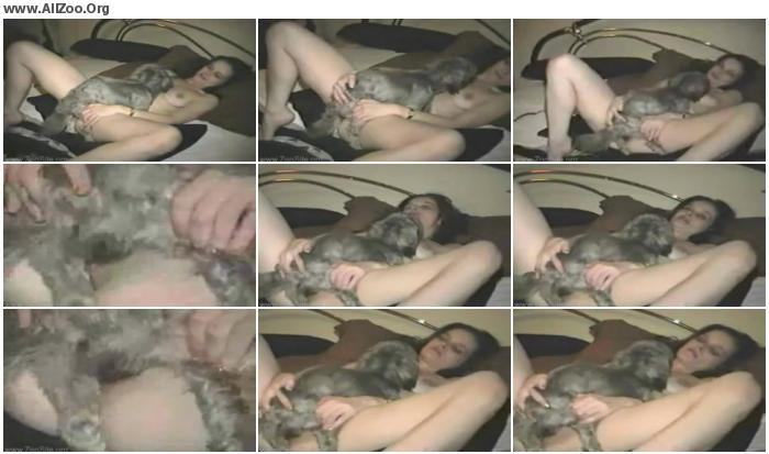 8b09e9673219383 - Little Dog - Small Mobile Bestiality Video