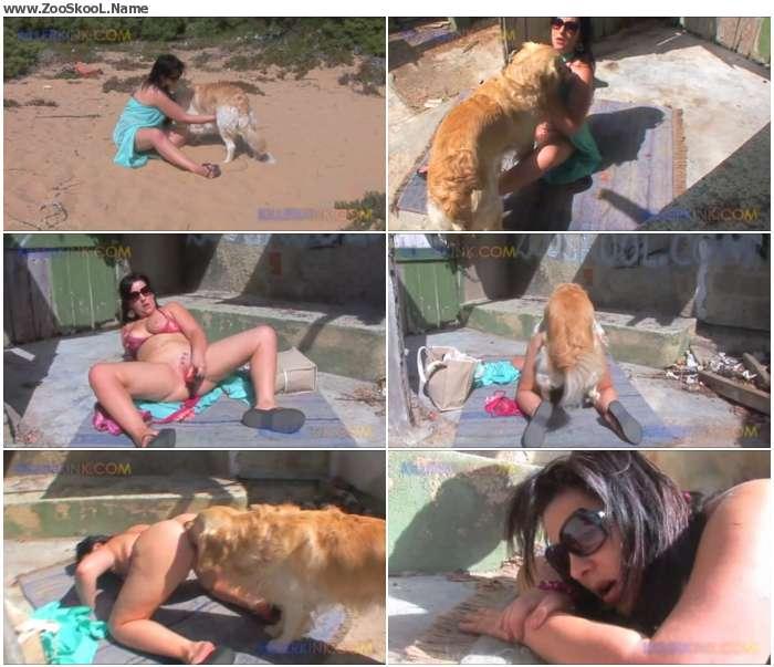1b5b1d1250254234 - Domino - Walkies - Amateur Animal Porn