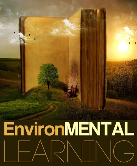 John David - BrainSpeak - EnvironMental Learning