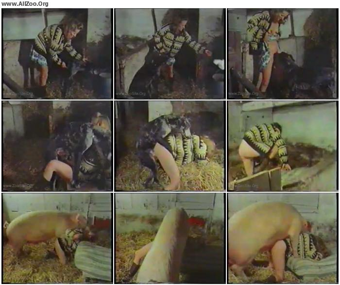 e66f8d737050573 - Woman Raped By Pig And Dog - Small Mobile Bestiality Video