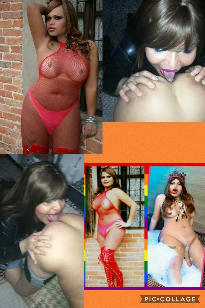 donna-cerca-uomo verbania 3270495825 foto TOP