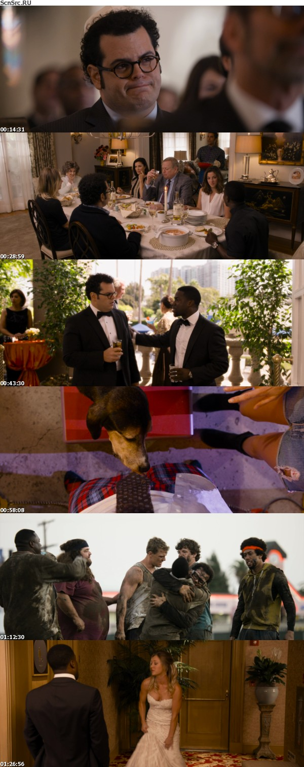 The Wedding Ringer 2015 1080p BluRay x264-SPARKS