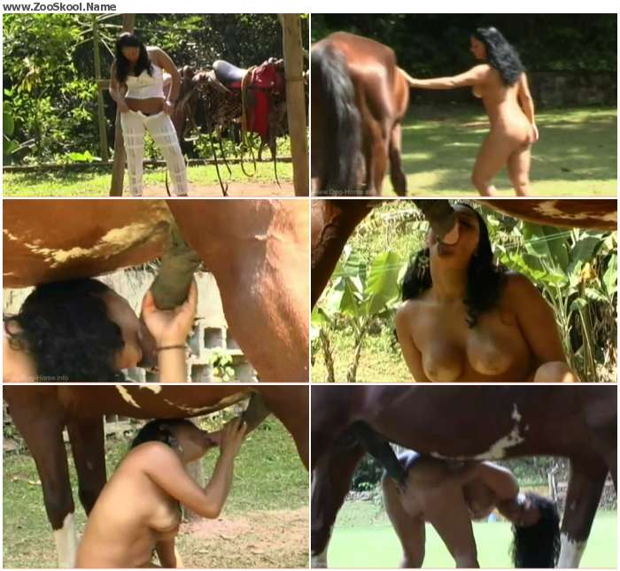 4c90bc1121349974 - Anal With Lovely Horse / Horse Porn