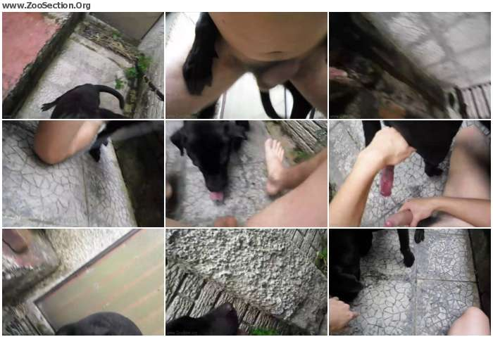 22574b1120771344 - Aluzky Pov Being Knotted / AnimalSex Video