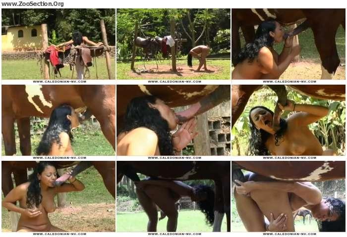 c99d741250298734 - Hannah Loves Horse Cock - Vintage Bestiality Porn