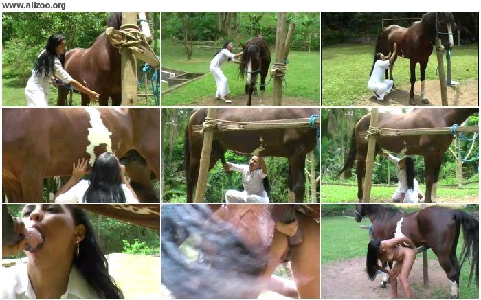 c1c7c0672681323 - Horse proctologue - Videos Bestiality Horse