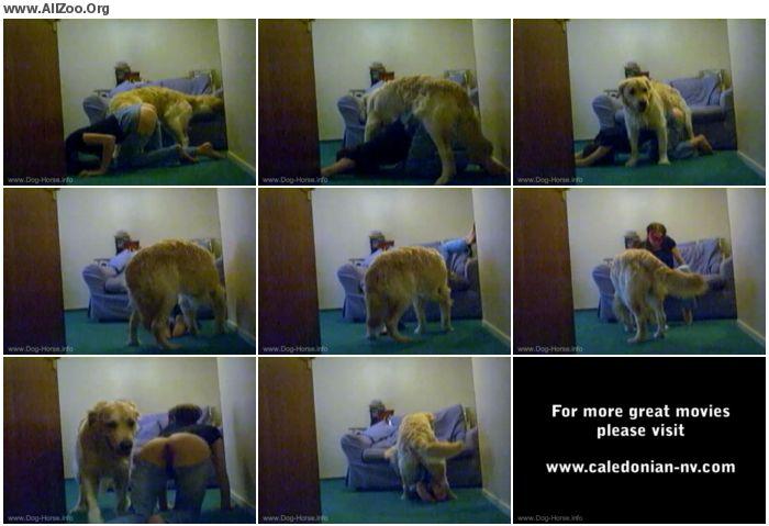 f22bde673236533 - Vintage Zoo - RetroZ Shylarks Loves her Dog - Retro AnimalSex
