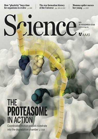 Science – 30 November 2018