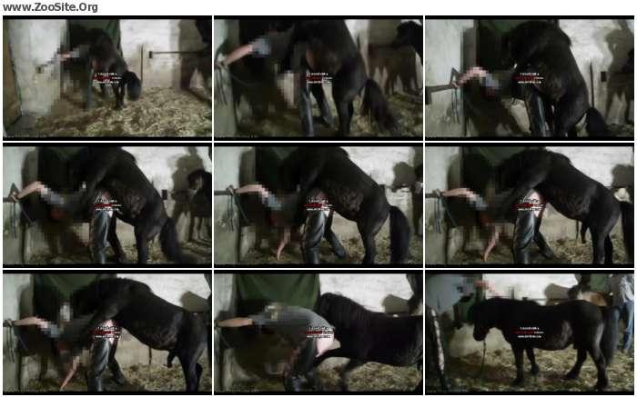 dfd31a880254794 - Unbetitelt - Horse German Fuck - Horse Porn Videos