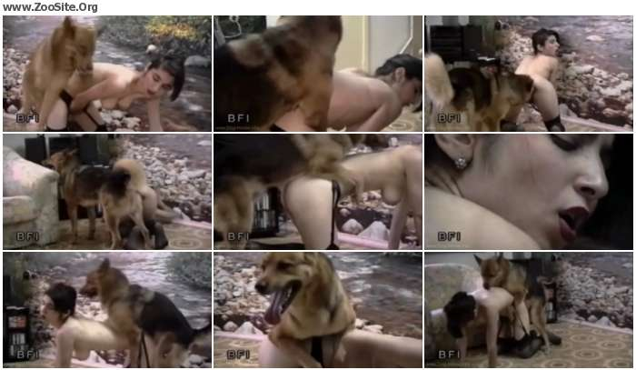 Young Brunette And Her Dog - Free Dog Sex | Zoo Sex Site №1