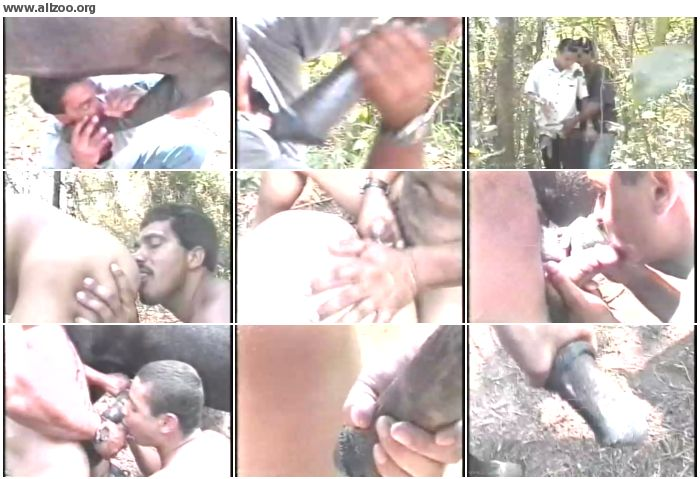 9971b31065909234 - Gay Zoo Au Brasil - Videos Bestiality Horse