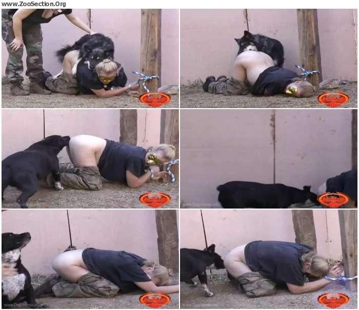 b2f4481325654066 - Doggie Interogation - Zoo Porn Download