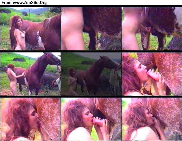 3b43ae1333126627 - Tiffany S Horse - ZooSex Tube