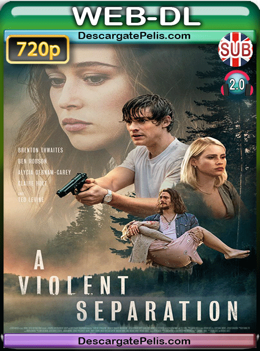 A violent separation 2019 720p WEB-DL Subtitulado