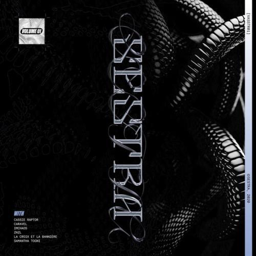 VASSTR01 Volume 1 (2021) FLAC
