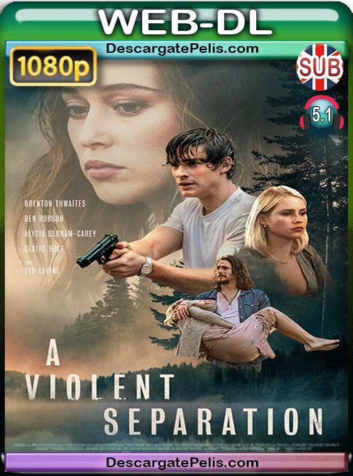 A violent separation 2019 1080p WEB-DL Subtitulado