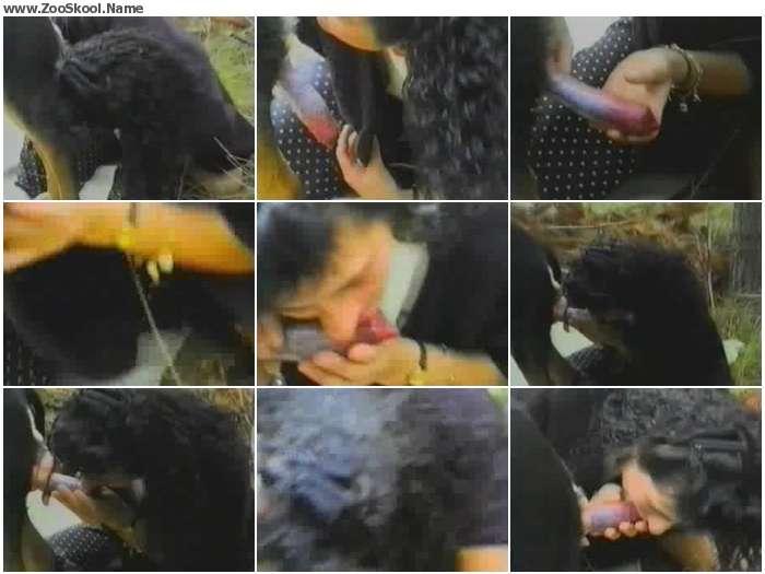 e3ff621324215003 - Dog Blowjob 314 - Zoo Tube Video