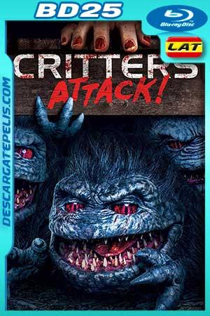 Critters Attack 2019 BD25 Latino