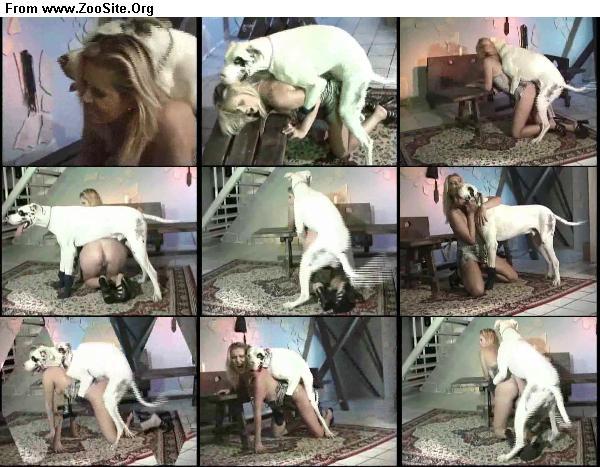 8b026c1333126796 - Dog Humping Beautiful Girl 2 - ZooSex Tube