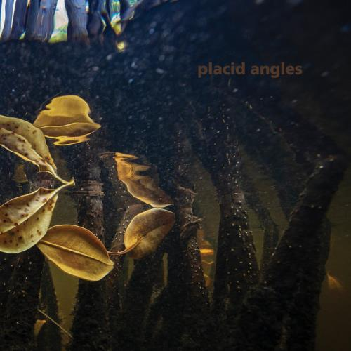 Placid Angles — Touch The Earth (2021)