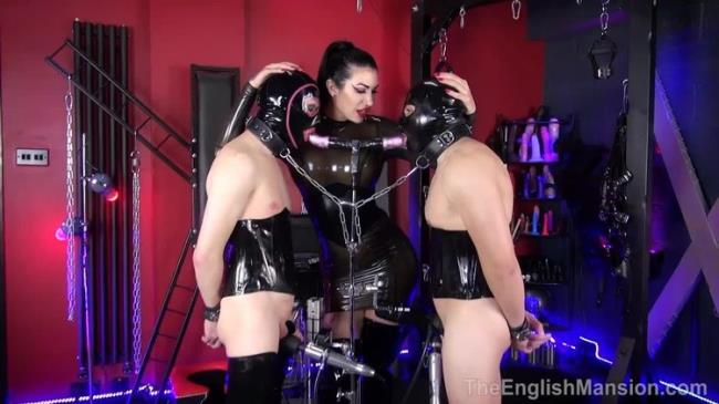 TheEnglishMansion: Damazonias Filthy Bi Boys - Part 1 Starring: Mistress Damazonia