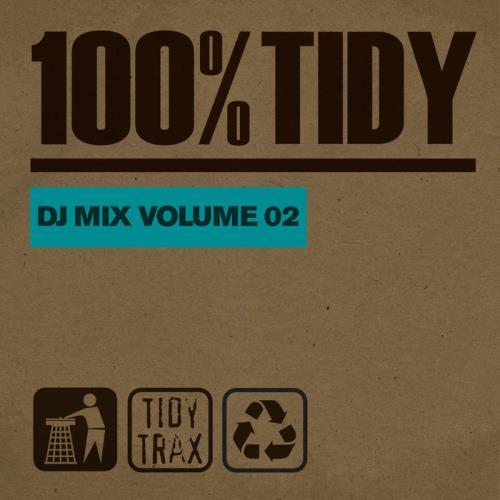 100% Tidy, Vol. 2 (2021)