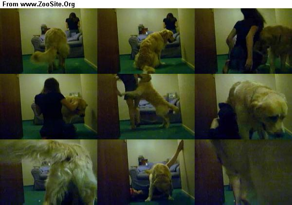 fe35e51333126497 - Masked Girl Dog Hump - ZooSex Tube