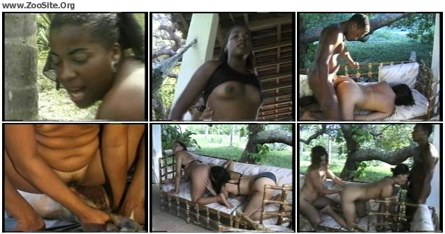 2290d81314148493 - UM AMANTE ANAL - Animal Porn Movie