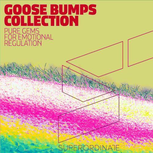 Goose Bumps Collection, Vol. 5 (2021)