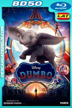 Dumbo 2019 BD50 Latino