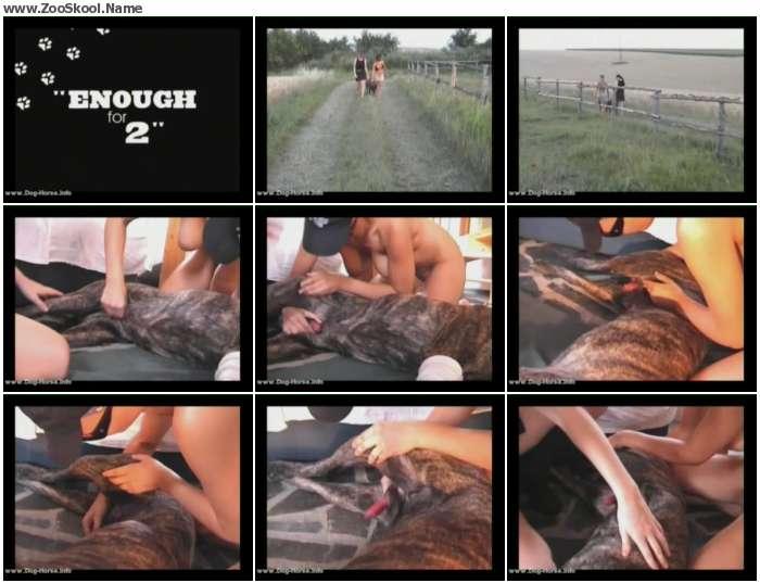 9d7e141313848242 - ZooSkool-Amanda And Anna / by ZooSkool.Name