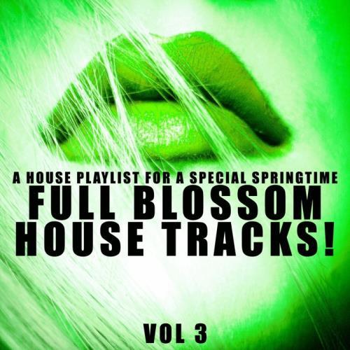 Full Blossom House Tracks! Vol 3 (2021)