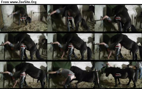 4dcd0f1333125845 - Unbetitelt - Horse German Fuck / Horse Sex Video